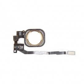 Nappe + Bouton Home Or - iPhone 5S / SE